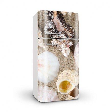 Caracolas en la Playa