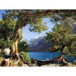 Paisaje Lago al Pie de la Montaña