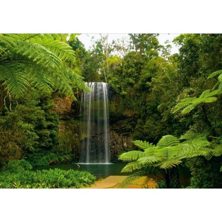 Cascada de la Selva Perdida