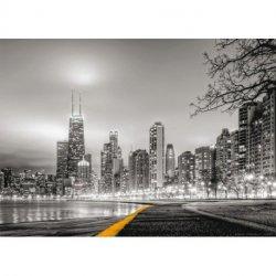 Noche de Chicago en Blanco y Negro