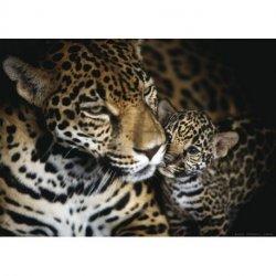 Mama Leopardo y Cachorro