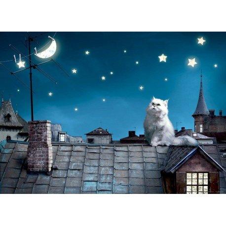 Gato en el Tejado de Noche