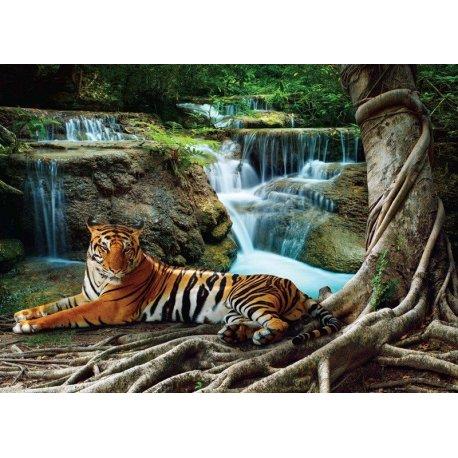 Tigre Tumbado en la Selva