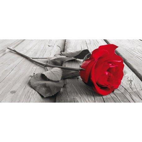 Romántica Rosa Roja Caída