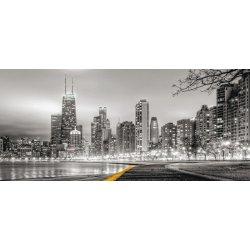 Luces de Chicago en Blanco y Negro
