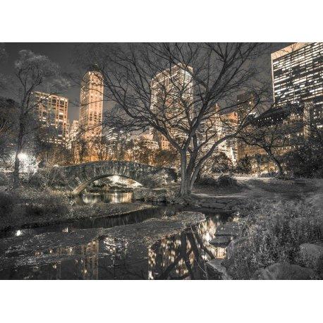 Central Park sobre New York Iluminada