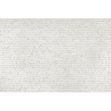 Muro de Ladrillos en Blanco