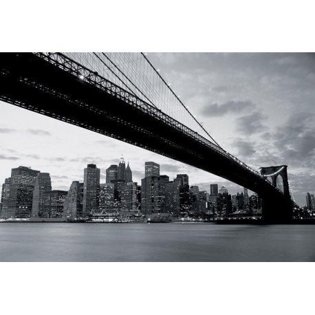 Bajo el Puente de Brooklyn en Blanco y Negro
