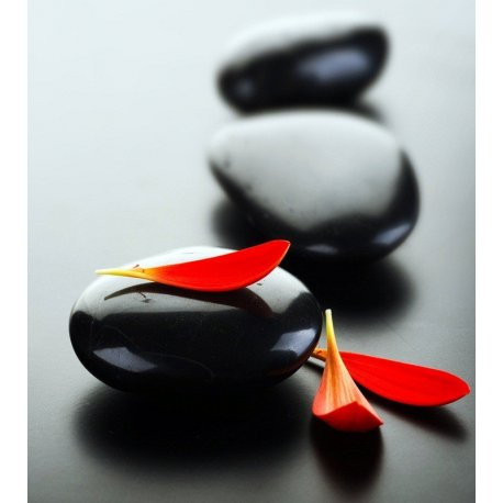 Piedras Zen en Negro con Pétalos