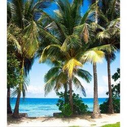 Playa de Palmeras junto a Mar Azul