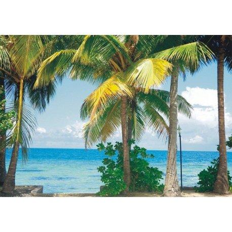 Vistas al Mar desde el Paraíso