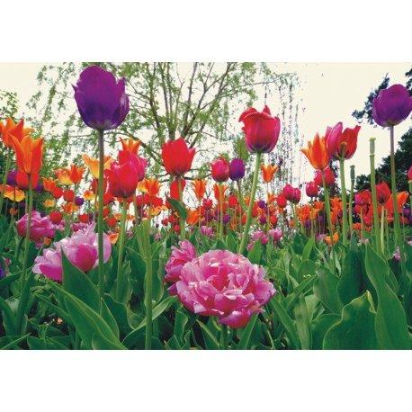 Mural Rodeado de Tulipanes