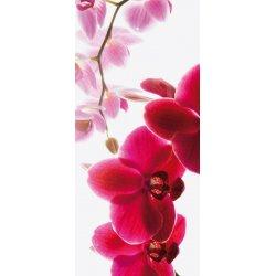 Rama de Orquídeas y Lilas