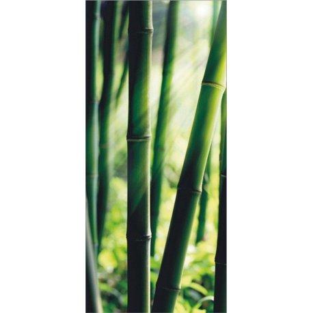 Verde Bambú Iluminado