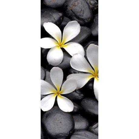 Fotomural Para Puertas Piedras Negras Zen Y Flores Blancas