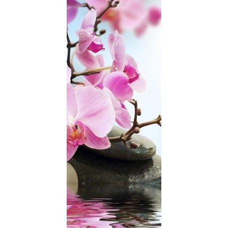 Orquídeas en Estanque Zen