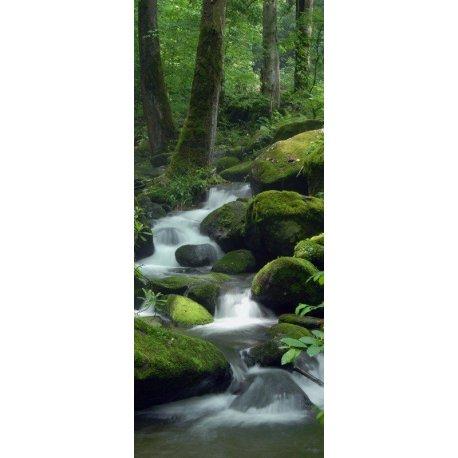 El Descenso del Río por las Piedras