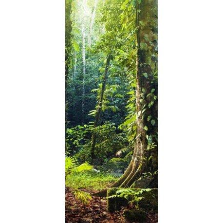 Entrada a la Selva Misteriosa