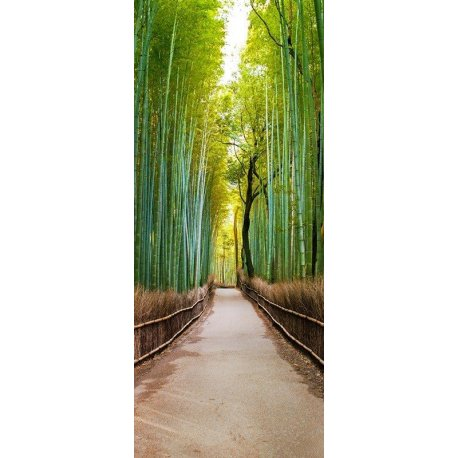 Paseo por el Bosque Verde
