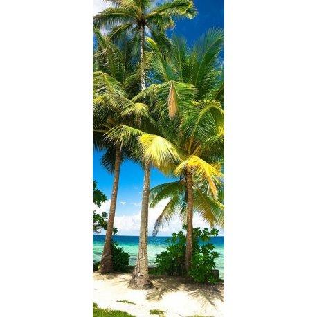 Palmeras en la Playa del Caribe