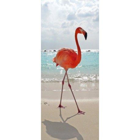 Flamenco Caminando en la Playa