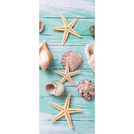 Composición Estrellas de Mar y Conchas