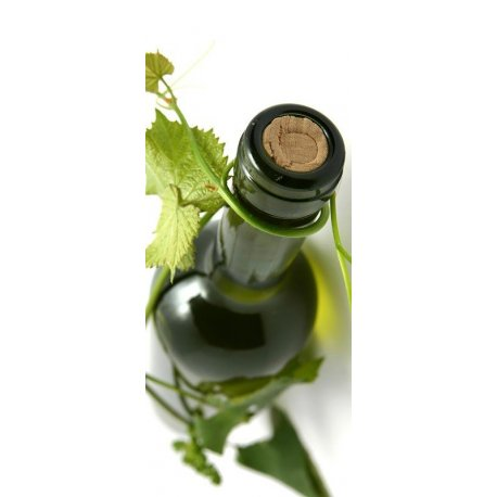 Botella de Vino y Vid