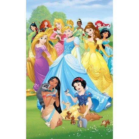 Todas las Princesas Disney Juntas